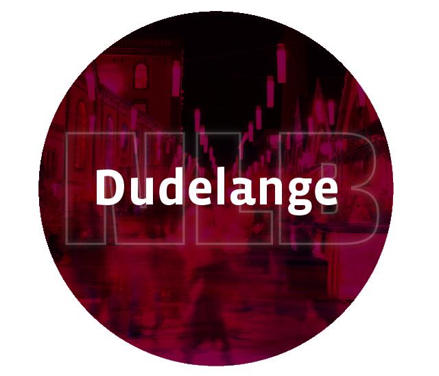 Nightlifebus Dudelange